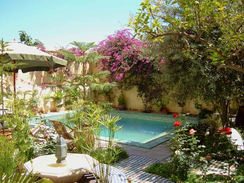 Morocco swimming pool riads with swimming pools in for Riad marrakech piscine