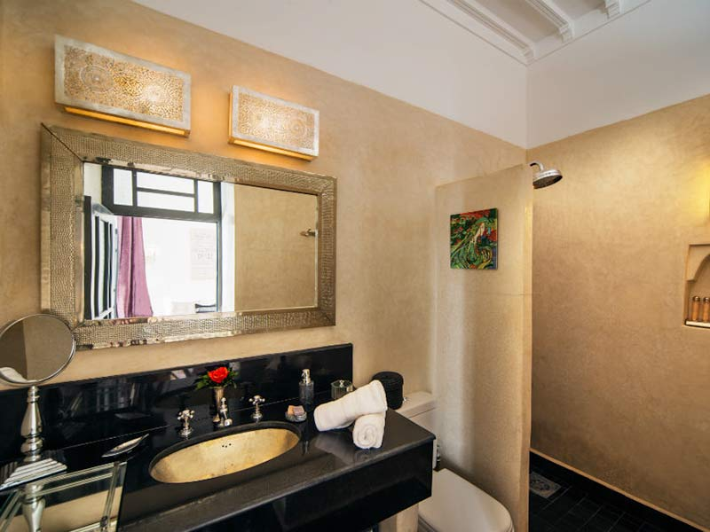 Paris ensuite shower room